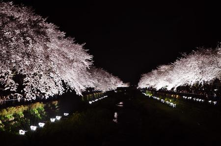 Photo090407_01